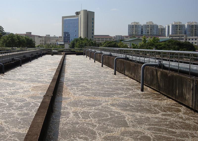 泰州污水处理厂污泥脱水絮凝剂案例
