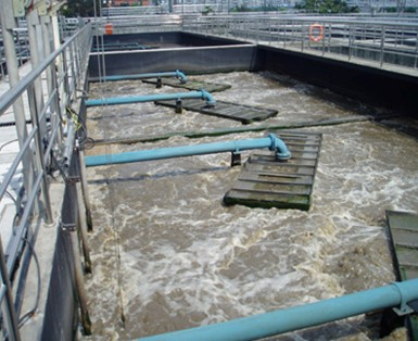 山东造纸厂污泥处理用的阳离子聚丙烯酰胺案例